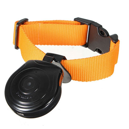 Dog and Cat Camera Collar